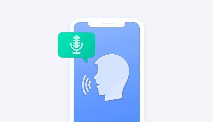 Integrate in-app audio calling (voice calls)